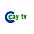 ドy Tv
